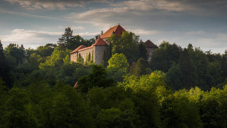 Naprodaj grad Mirna za več kot pol milijona evrov