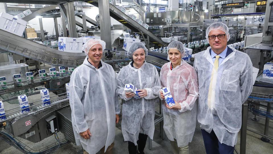 Ljubljanske mlekarne bodo iz mleka slovenskih krav za vso Evropo delale Siggijev islandski jogurt skyr
