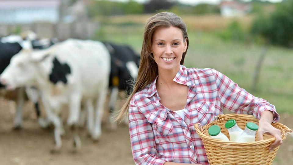 Lani se je stopnja samooskrbe povečala le pri mesu in mleku