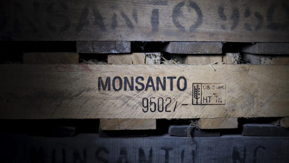 Bayer bi s 55 milijardami evrov prevzel Monsanta
