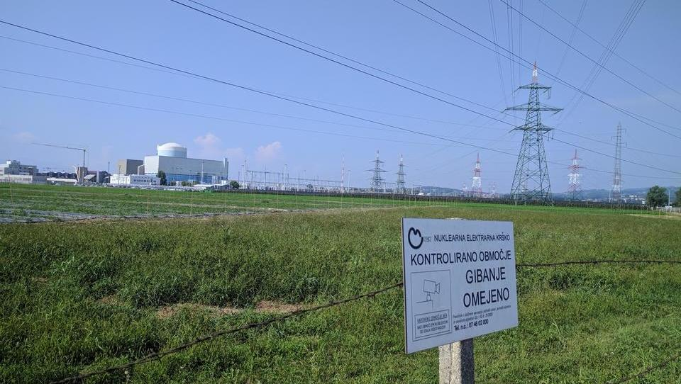 'Najugodnejše razogljičenje: pol jedrske energije, pol obnovljivih virov'