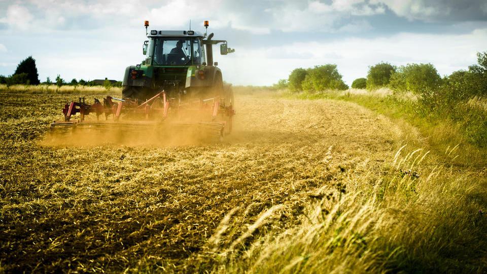 Prepoved fitofarmacevtskih sredstev bi prinesla večji uvoz hrane in uničila slovensko pridelavo