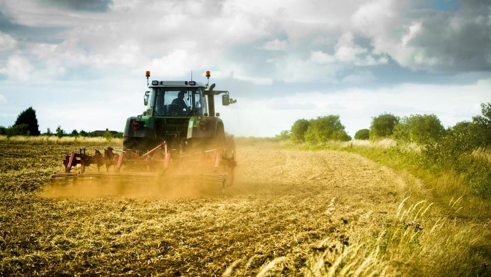 Tako bodo mladi kmetje dobili več zemlje