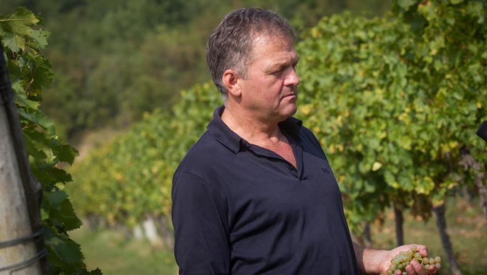 Odločilni koraki pri trženju vina na tujih trgih