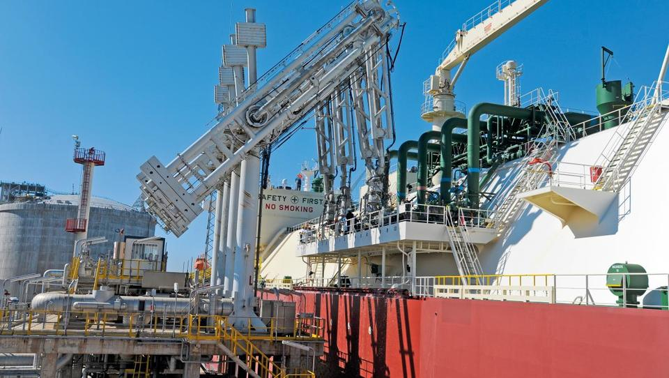 Plinskega terminala v Žavljah ne bo