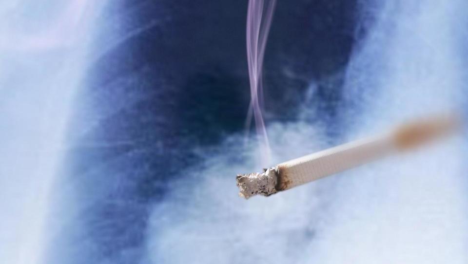 Evropejke že pobirajo grenke sadove tobačne odvisnosti