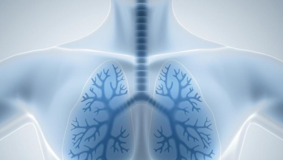 Pljučna hipertenzija: Primarna raven ima izjemno vlogo pri zgodnjem odkrivanju in napotitvi