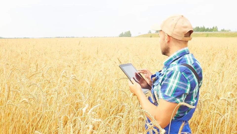 Spremembe zakona o kmetijstvu bi škodile agroživilski verigi
