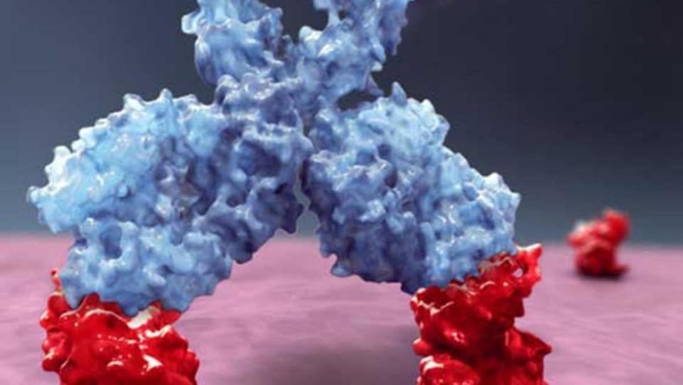 Najučinkovitejša orožja proti diseminiranemu plazmocitomu
