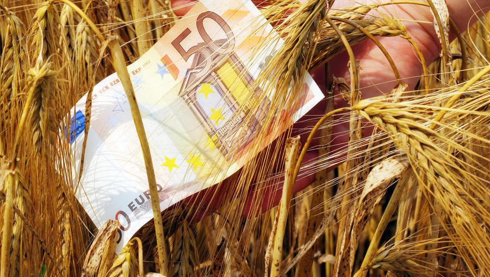Pozor, podaljšan je rok za oddajo zbirne vloge za kmetijske subvencije