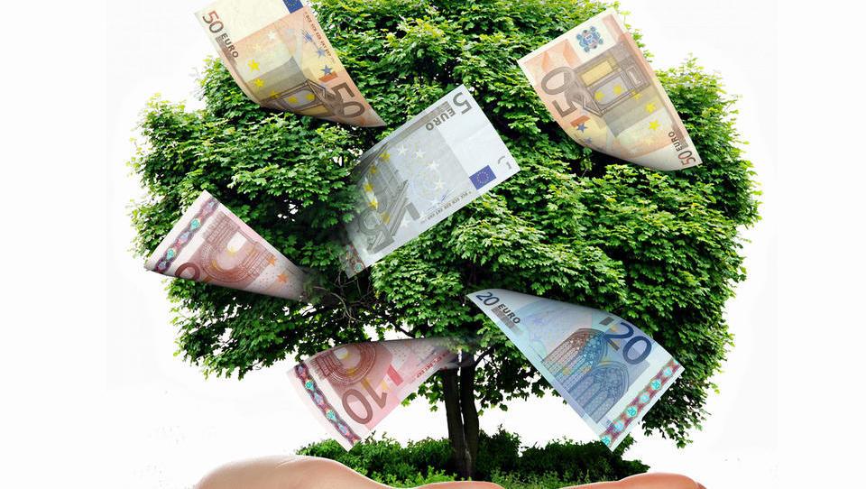 Kmetje bodo morali preživeti z manj evropskega denarja