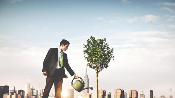 OECD Sloveniji: rast lahko povečate tudi z ureditvijo trga najemnih stanovanj