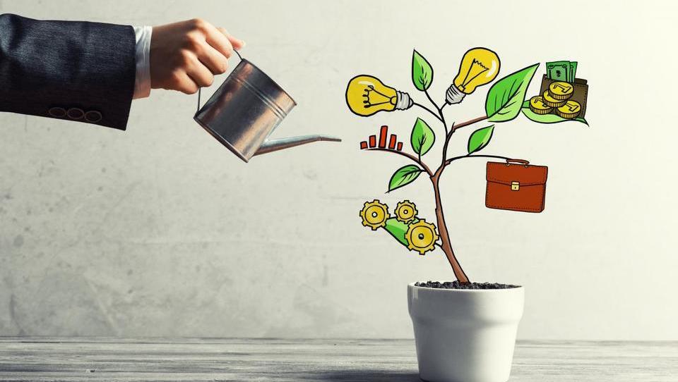 Za inovativna mlada podjetja prihajajo spodbude v obliki semenskega kapitala