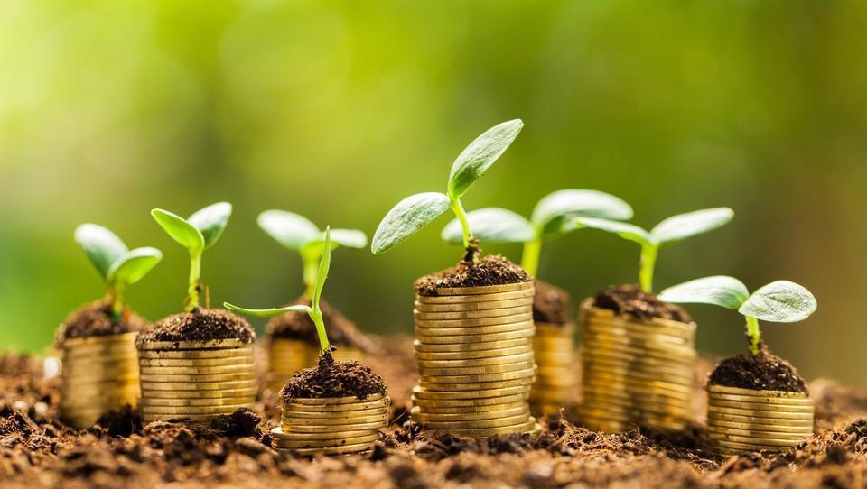 Startupi, ciljate na 54 tisočakov podjetniškega sklada? Tako se lotite prijave na P2