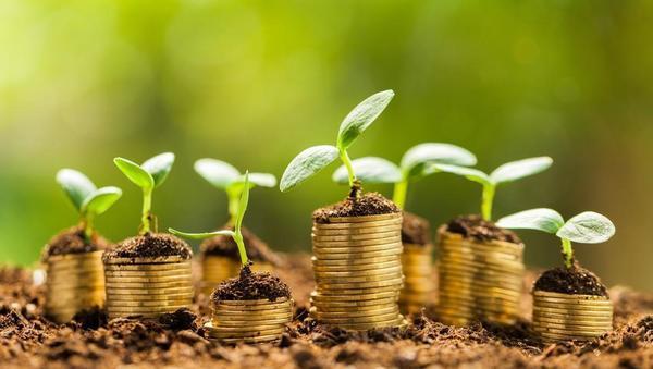3 stvari, ki jih morate vedeti o najnovejših napovedih Banke Slovenija