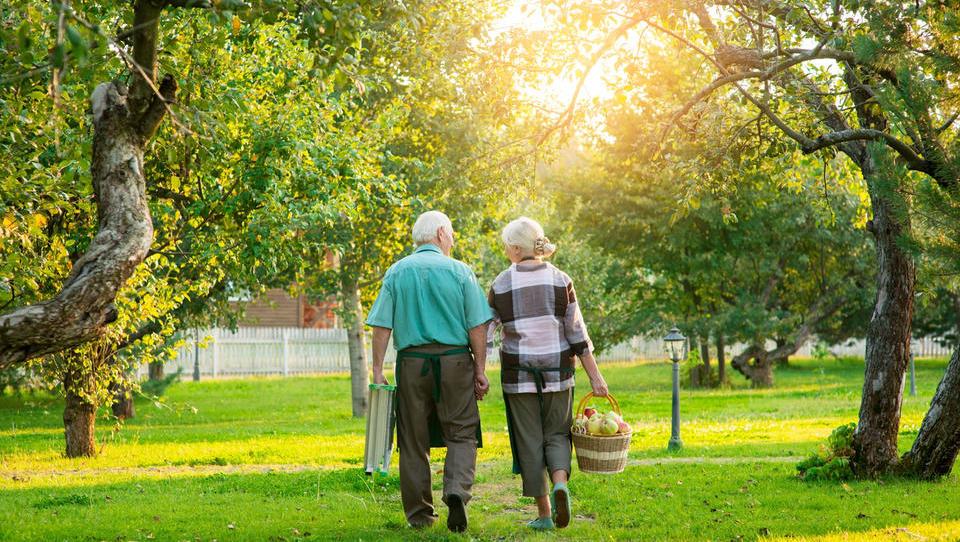 Kmetije bodo lahko ponujale tudi (celo)dnevno varstvo starejših