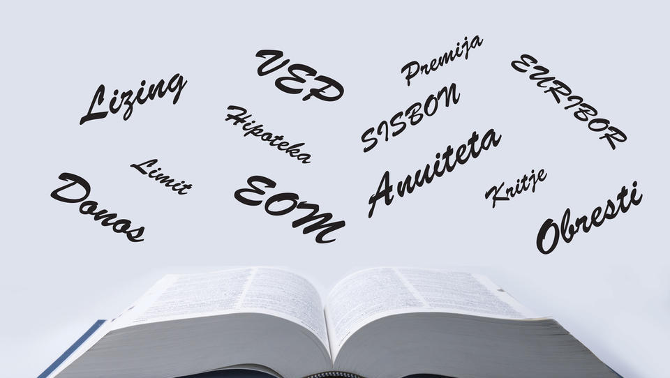 (slovar) Finančni izrazi, ki jih je dobro poznati in razumeti