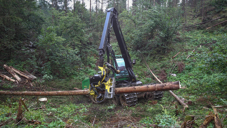 Za odpravo škode v gozdovih na dveh razpisih 3,41 milijona evrov