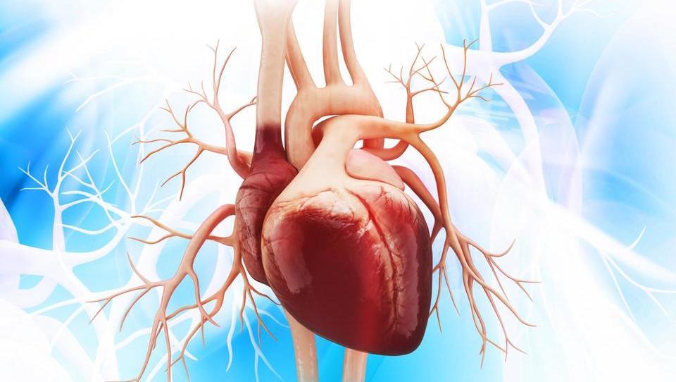 Sveže in najnovejše v kardiologiji