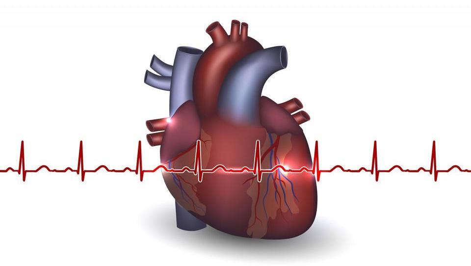 Tudi pri srčnem popuščanju potrjen zaščitni učinek zdravega življenjskega sloga