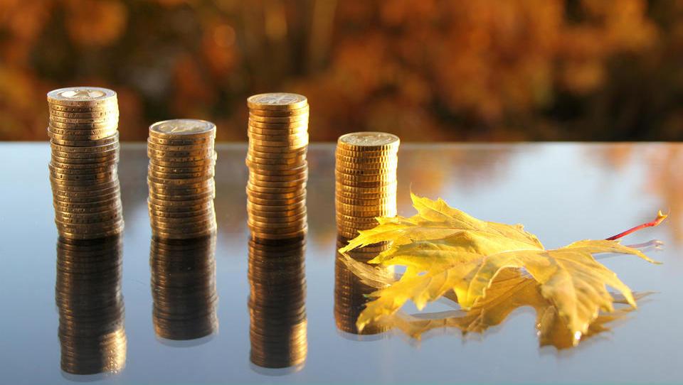 Subscience at enem mestu: kje lahko podjetja to jesen poberete denar