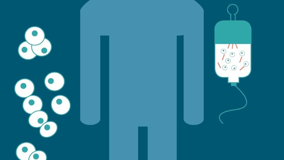 T-celične terapije veliko obetajo pri nekaterih hematoloških oblikah raka
