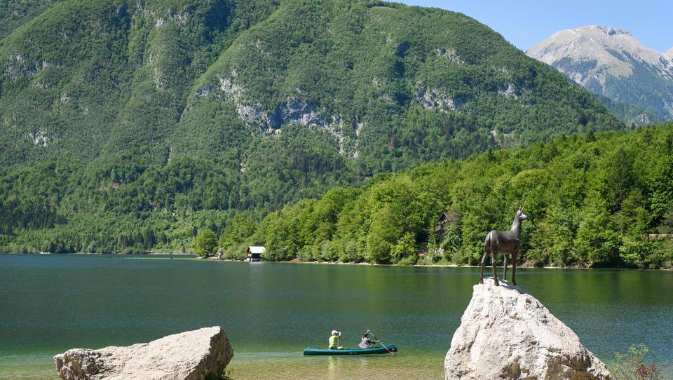 Korporativno prostovoljstvo: pospravljali bodo okolico Bohinjskega jezera