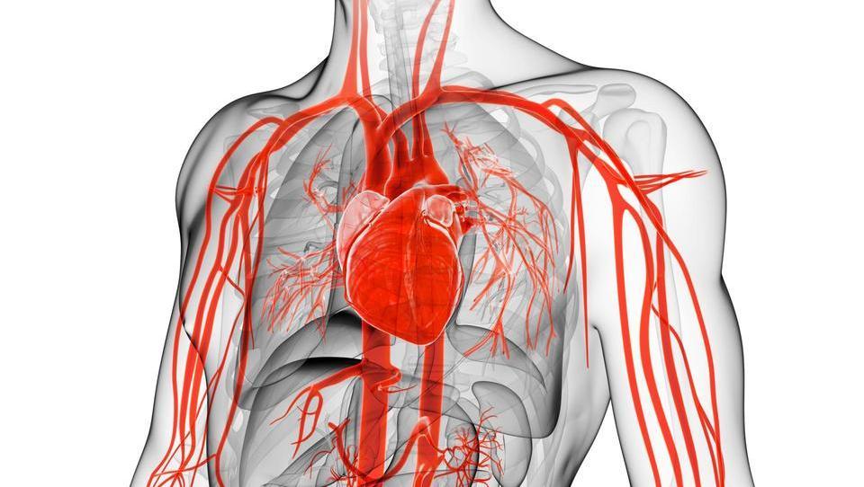 Dulaglutid se po srčno-žilnih rezultatih sooča z resno konkurenco