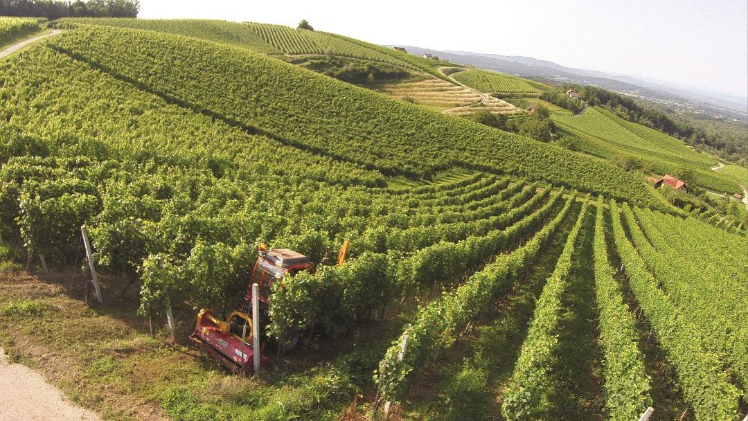 V KZ Metlika sladkor ne bo več edino merilo pri odkupni ceni grozdja