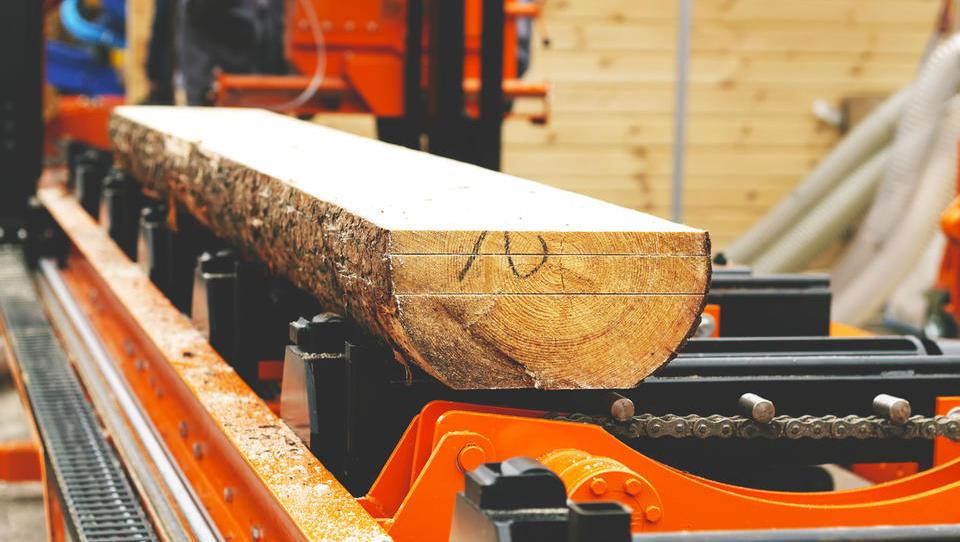 Žagarji in predelovalci lesa se utapljajo v naročilih
