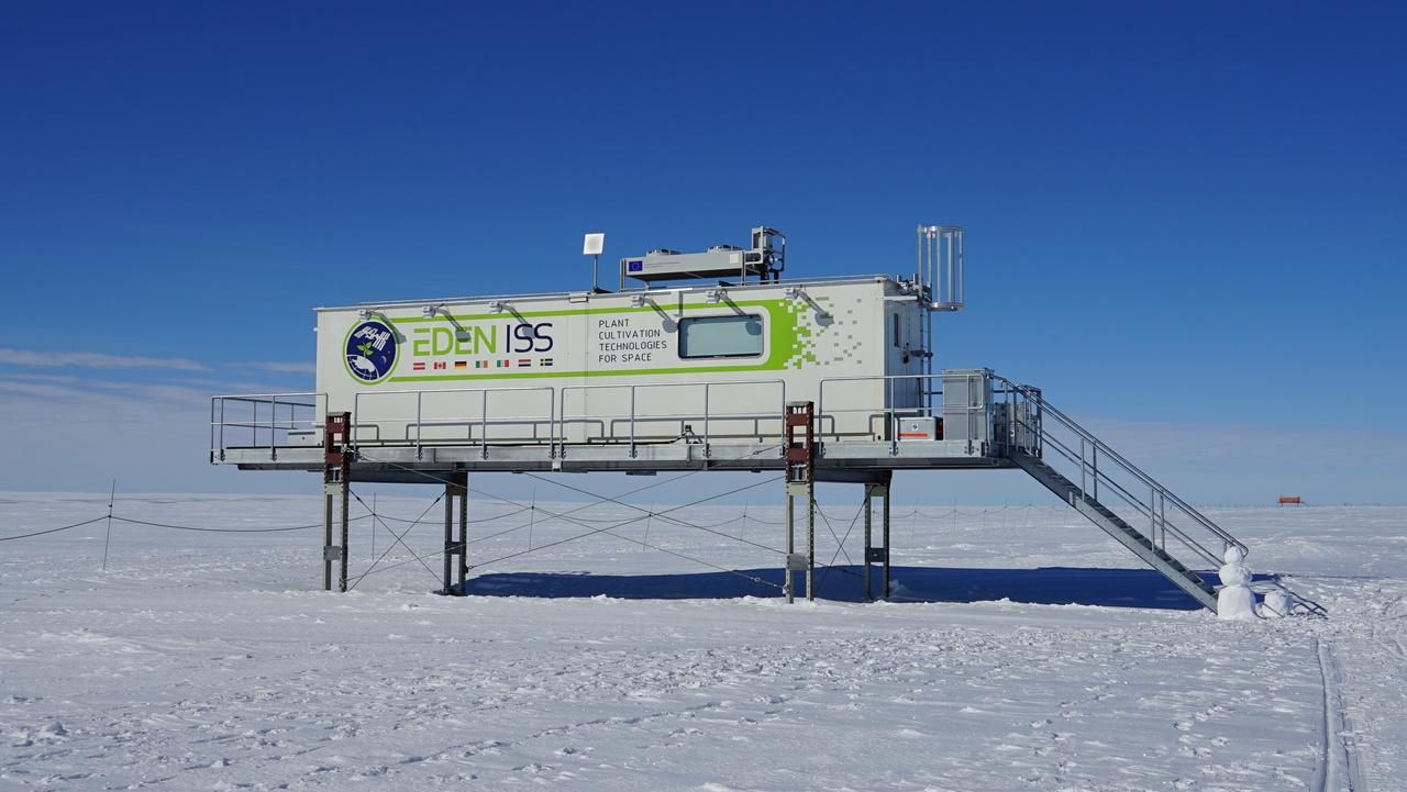 Na Antarktiki so brez zemlje in sončne svetlobe zrastle prve kumare, redkvice in solata