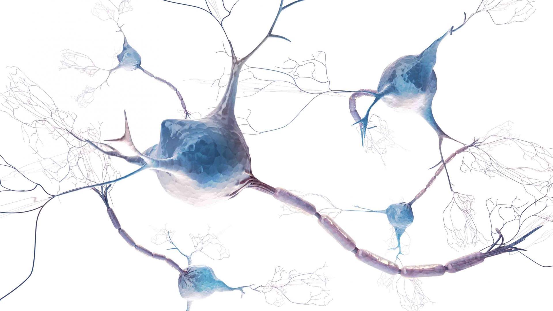 11 glavnih novosti z letošnje evropske konference o možganski kapi