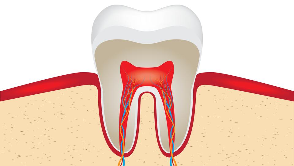 Do zobozdravnika res samo v nujnih primerih