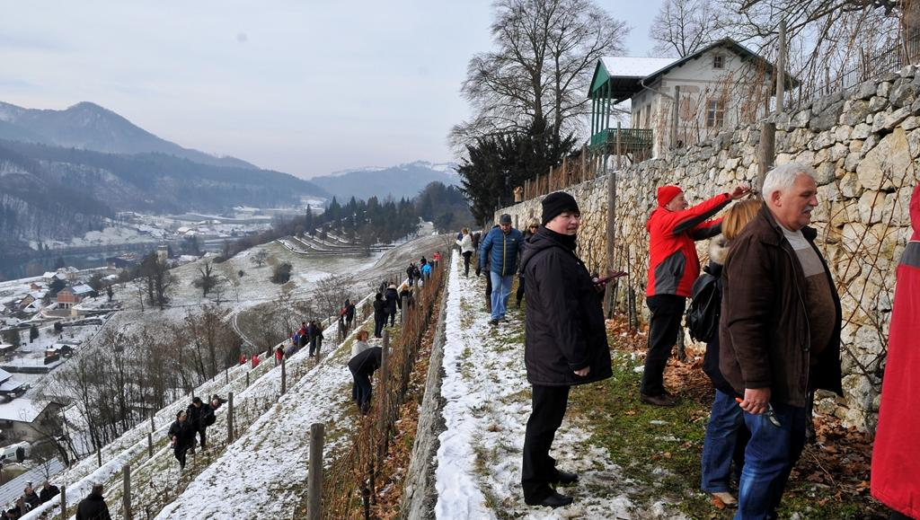 Jubilejna Grajska rez na gradu Sevnica