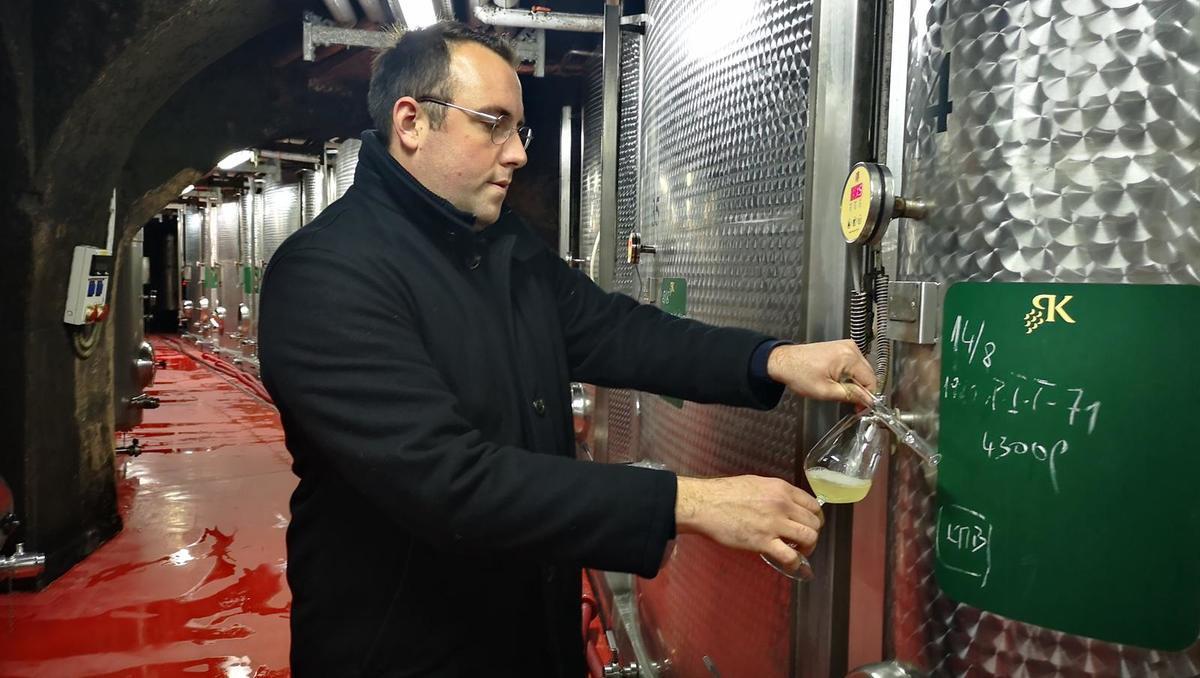 Od zemlje do vina: V zadnjem času je najbolj zaželena burgundska steklenica