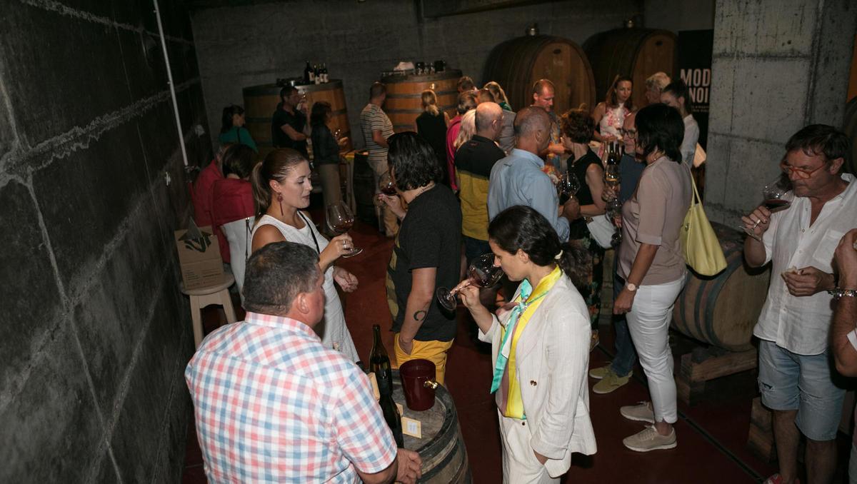 Matjaž Lemut: Modri pinot dosega desetkrat višje cene od vin iz drugih sort