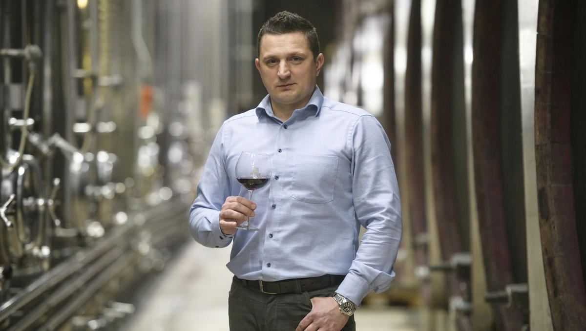 Kolumna Jožeta Cajnarja: Kako prodati vino?