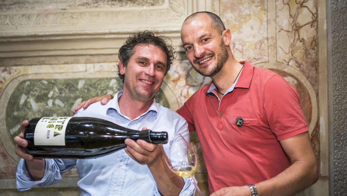 Med 12 velikih rdečih vin Balkana je Caroline Gilby uvrstila 5 slovenskih