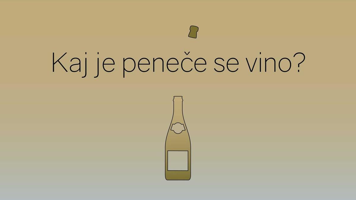 Kako nastane vino: zakaj v Sloveniji ne moremo pridelati šampanjca?