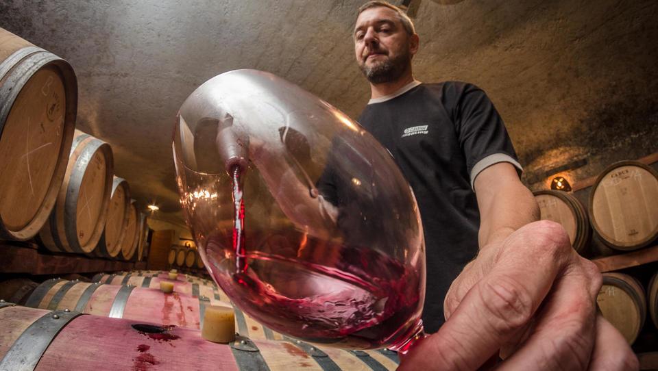 """""""Rdeča vina imajo percepcijo višje vrednosti, ki jo je postavil že Bordeaux"""""""
