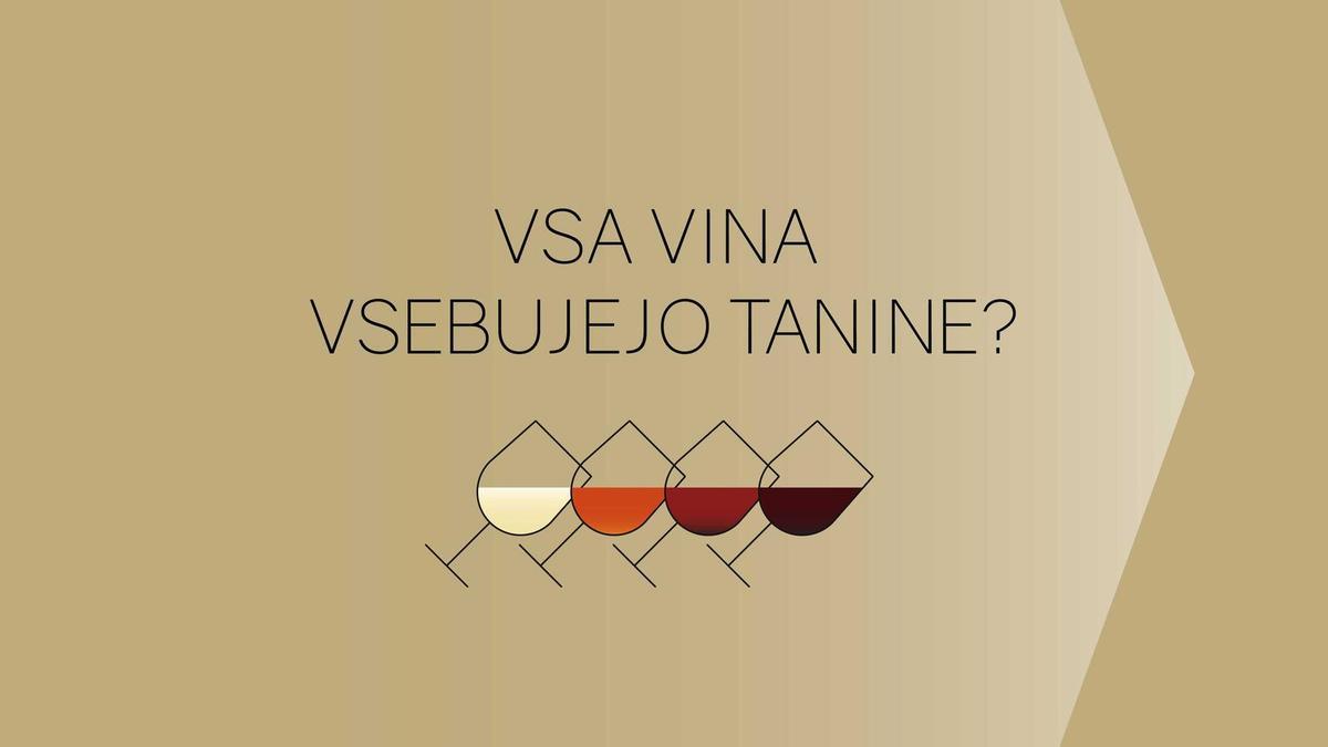 Kako nastane vino: kaj so tanini?