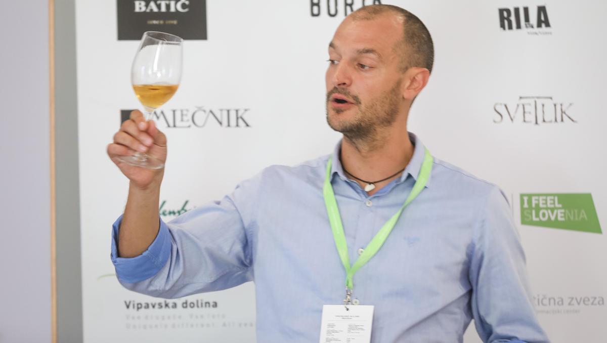 Kolumna Martina Gruzovina: (Ne)urejenost slovenskega vinskega trga